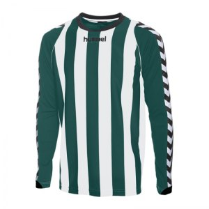 hummel-trikot-langarm-bee-authentic-gruen-weiss-f6131-04-059.jpg