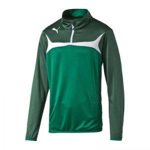 puma-esito-3-zip-trainingstop-sweatshirt-langarm-maenner-herren-man-training-trainingskleidung-gruen-f05-653966.jpg