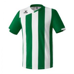 erima-siena-2.0-trikot-kurzarm-herrentrikot-teamsportbedarf-teamwear-mannschaftskleidung-gruen-weiss-313423.jpg