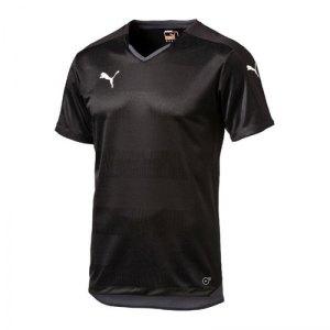 puma-stadium-shortsleeved-shirt-trikot-herren-maenner-man-kurzarmtrikot-kurzarm-herrenshirt-teamwear-schwarz-f03-702064.jpg