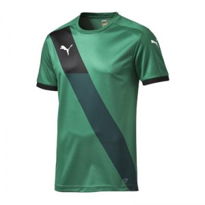 puma-finale-shortsleeved-shirt-trikot-teamsport-teamwear-spielertrikot-kurzarmtrikot-men-herren-men-gruen-f05-702069.jpg