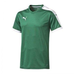 puma-pitch-shortsleeved-shirt-trikot-kurzarmtrikot-jersey-herrentrikot-teamwear-vereinsausstattung-men-herren-gruen-f05-702070.jpg
