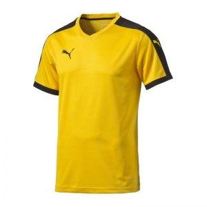 puma-pitch-shortsleeved-shirt-trikot-kurzarmtrikot-jersey-herrentrikot-teamwear-vereinsausstattung-men-herren-gelb-f07-702070.jpg