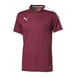 puma-pitch-shortsleeved-shirt-trikot-kurzarmtrikot-jersey-herrentrikot-teamwear-vereinsausstattung-men-herren-rot-f09-702070.jpg
