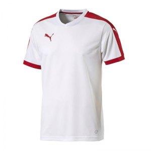 puma-pitch-shortsleeved-shirt-trikot-kurzarmtrikot-jersey-herrentrikot-teamwear-vereinsausstattung-men-herren-weiss-f12-702070.jpg