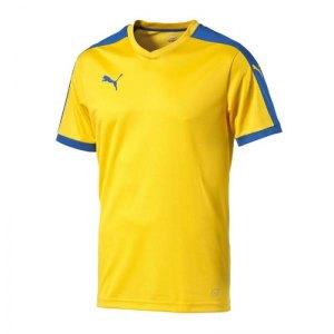 puma-pitch-shortsleeved-shirt-trikot-kurzarmtrikot-jersey-herrentrikot-teamwear-vereinsausstattung-men-herren-gelb-f20-702070.jpg