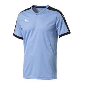 puma-pitch-shortsleeved-shirt-trikot-kurzarmtrikot-jersey-herrentrikot-teamwear-vereinsausstattung-men-herren-blau-f25-702070.jpg