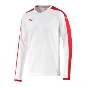 puma-pitch-longsleeved-shirt-trikot-langarm-herren-maenner-man-herrenshirt-trainingskleidung-mannschaftskleidung-teamwear-weiss-f12-702088.jpg