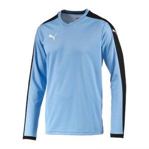 puma-pitch-longsleeved-shirt-trikot-langarm-herren-maenner-man-herrenshirt-trainingskleidung-mannschaftskleidung-teamwear-blau-f25-702088.jpg