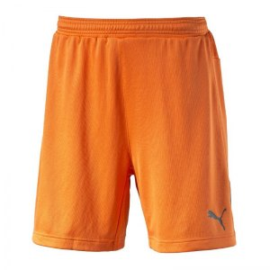 puma-stadium-gk-short-torwartshort-goalkeeper-torhueter-short-hose-men-herren-maenner-orange-f36-102090.jpg