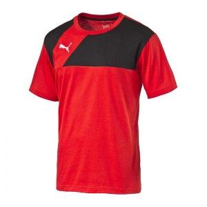 puma-esquadra-t-shirt-shirt-teamsport-fussball-f14-rot-schwarz-654384.jpg