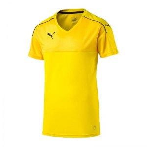 puma-accuracy-trikot-kurzarm-jersey-teamsport-vereine-men-herren-maenner-gelb-f07-702214.jpg