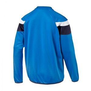 puma-spirit-2-training-sweatshirt-teamsport-vereine-mannschaft-men-herren-blau-f02-654656.jpg