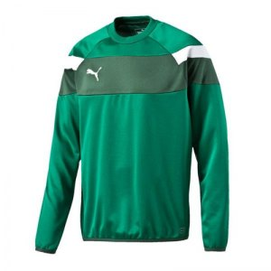 puma-spirit-2-training-sweatshirt-teamsport-vereine-mannschaft-men-herren-gruen-f05-654656.jpg