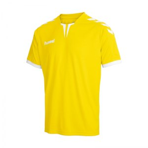hummel-core-trikot-kurzarm-gelb-f5001-teamsport-vereine-mannschaften-jersey-shortsleeve-men-herren-03-636.jpg