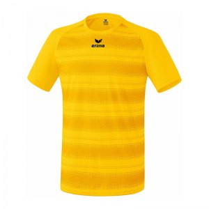 erima-santos-trikot-kurzarm-gelb-teamsport-vereine-mannschaften-jersey-men-herren-313643.jpg
