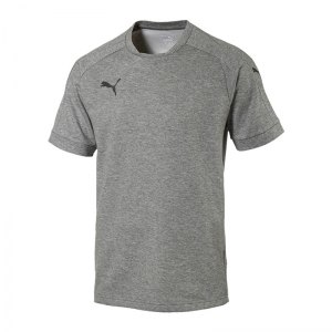 puma-ascension-tee-t-shirt-grau-f61-sportbekleidung-herren-men-maenner-shortsleeve-kurarm-shirt-654924.jpg