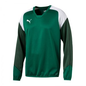 puma-esito-4-training-sweatshirt-gruen-weiss-f05-teamsport-herren-men-maenner-longsleeve-langarm-shirt-655222.jpg