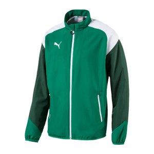 puma-esito-4-woven-trainingsjacke-gruen-weiss-f05-teamsport-herren-men-maenner-jacke-jacket-655224.jpg