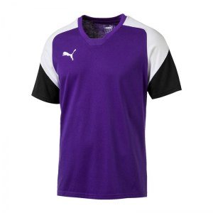 puma-esito-4-tee-t-shirt-lila-weiss-f10-teamsport-herren-men-maenner-shortsleeve-kurzarm-shirt-655226.jpg