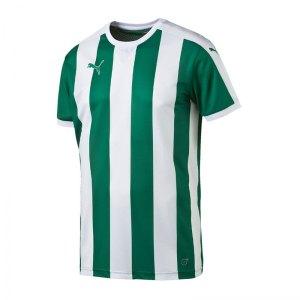 puma-striped-trikot-kurzarm-gruen-weiss-f05-shortsleeve-shirt-jersey-matchwear-spiel-training-teamsport-702068.jpg