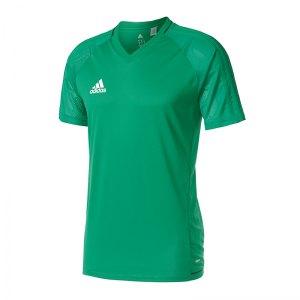 adidas-tiro-17-trainingsshirt-gruen-fussball-teamsport-ausstattung-mannschaft-bq2803.jpg