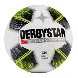 derbystar-brillant-tt-hs-trainingsball-weiss-f125-fussball-feinnarbig-kunstleder-butylblase-erwachsene-fussballtraining-1299.jpg