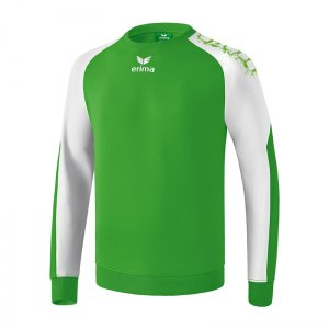 erima-5-cubes-graffic-baumwollsweat-gruen-sweater-sweatpullover-sportpullover-tragkomfort-baumwolle-6070710.jpg