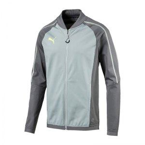 puma-evotrg-track-jacket-jacke-grau-f03-sportbekleidung-trainingsbekleidung-ausruestung-655327.jpg