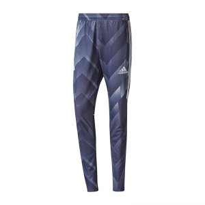 fb7b99fbb1eebb adidas-tango-training-graphic-pant-grau-bq4492-fussball-