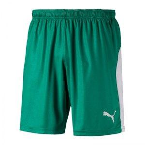 puma-liga-short-gruen-weiss-f05-teamsport-textilien-sport-mannschaft-703431.jpg