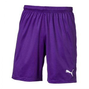 puma-liga-core-short-f10-hose-kurz-teamsport-match-training-mannschaft-703436.jpg
