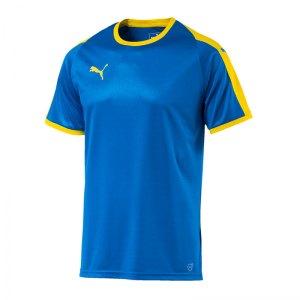 puma-liga-trikot-kurzarm-blau-gelb-f16-funktionskleidung-vereinsausstattung-team-ausruestung-mannschaftssport-ballsportart-703417.jpg