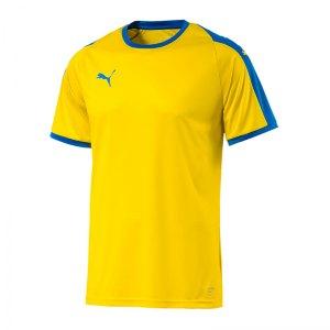 puma-liga-trikot-kurzarm-gelb-blau-f17-funktionskleidung-vereinsausstattung-team-ausruestung-mannschaftssport-ballsportart-703417.jpg