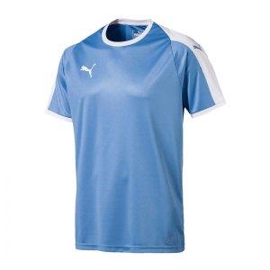 puma-liga-trikot-kurzarm-blau-weiss-f18-funktionskleidung-vereinsausstattung-team-ausruestung-mannschaftssport-ballsportart-703417.jpg