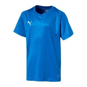 puma-liga-core-trikot-kurzarm-kids-blau-weiss-f02-teamsport-mannschaft-spiel-703542.jpg