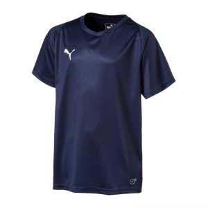puma-liga-core-trikot-kurzarm-kids-blau-weiss-f06-teamsport-mannschaft-spiel-703542.jpg