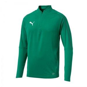 puma-final-training-1-4-zip-top-f05-teamsport-mannschaft-ausruestung-655289.jpg