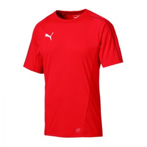 puma-final-training-trikot-kurzarm-f01-teamsport-mannschaft-match-ausruesrung-655292.jpg