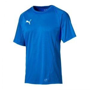puma-final-training-trikot-kurzarm-f02-teamsport-mannschaft-match-ausruesrung-655292.jpg