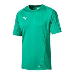 puma-final-training-trikot-kurzarm-f05-teamsport-mannschaft-match-ausruesrung-655292.jpg