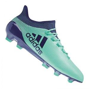 adidas-x-17-1-fg-gruen-blau-fussball-sport-match-training-geschwindigkeit-komfort-neuheit-cp9163.jpg