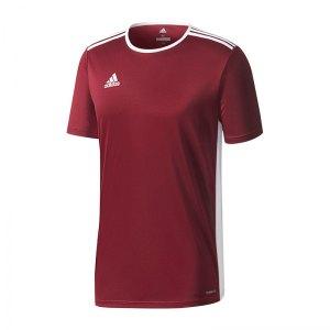 adidas-entrada-18-trikot-kurzarm-dunkelrot-weiss-teamsport-mannschaft-ausstattung-shirt-shortsleeve-cd8430.jpg