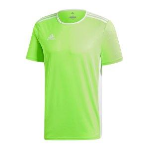 adidas-entrada-18-trikot-kurzarm-gruen-weiss-teamsport-mannschaft-ausstattung-shirt-shortsleeve-ce9758.png