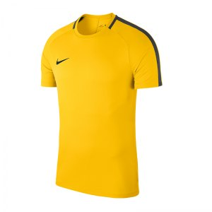 nike-academy-18-football-top-t-shirt-gelb-f719-shirt-oberteil-trainingsshirt-fussball-mannschaftssport-ballsportart-893693.jpg