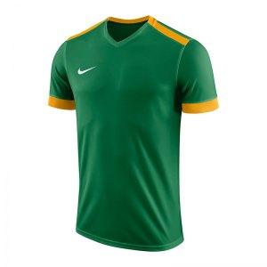 nike-dry-park-derby-ii-trikot-gruen-gold-f302-trikot-shirt-team-mannschaftssport-ballsportart-894312.jpg