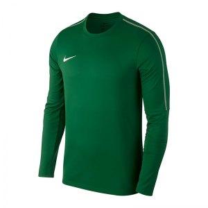 nike-park-18-crew-top-sweatshirt-gruen-f302-top-langarm-sweatshirt-mannschaftssport-ballsportart-aa2088.jpg