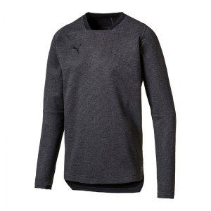 puma-final-casual-sweatshirt-grau-f33-teamsport-mannschaft-ausstattung-655293.png