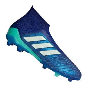 adidas-predator-18-plus-fg-j-kids-blau-gruen-fussballschuhe-footballboots-nocken-firm-ground-naturrasen-cp8984.jpg