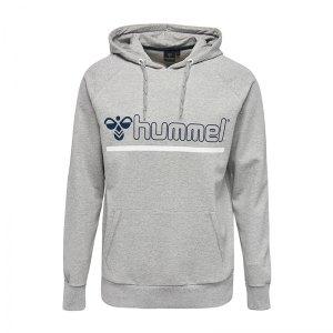 hummel-comfort-hoody-kapuzensweatshirt-f2006-teamsport-oberteil-hoody-200440.jpg